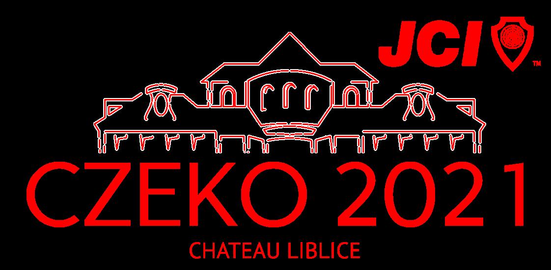 Vize 2030 - CZEKO 2020